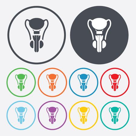 genitali: illustrazione vettoriale della moderna b mancanza organo icona maschile