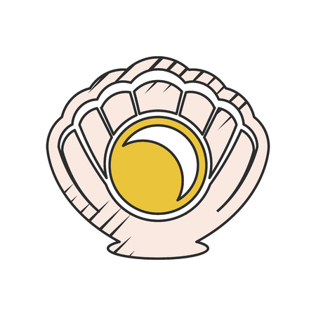 molluscs: shell icon on white background for web