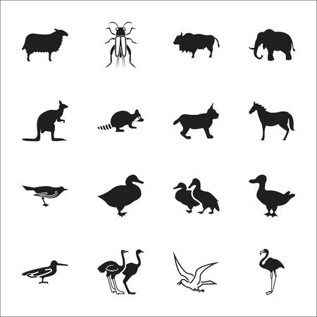 16: animal, bird 16 black simple icons set for web design