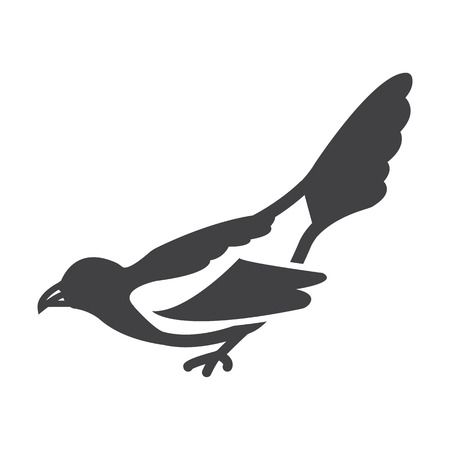 magpie: magpie black simple icon on white background for web design