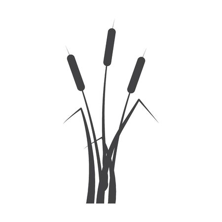 bulrush: bulrush black simple icon on white background for web design
