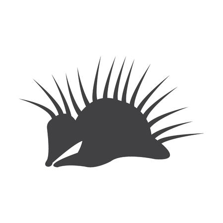 porcupine: porcupine black simple icon on white background for web design