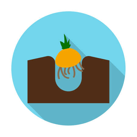 agricultura: onion flat icon with long shadow for web design Illustration