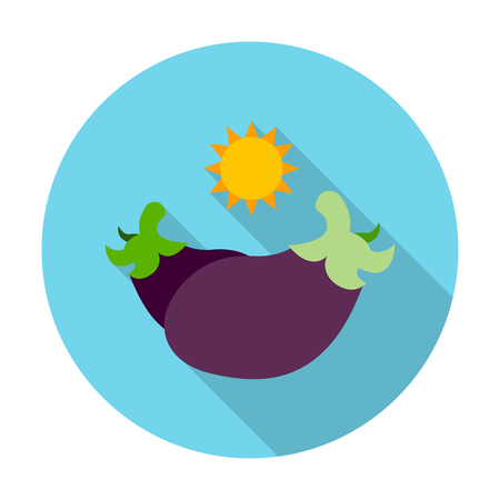 agricultura: eggplant flat icon with long shadow for web design