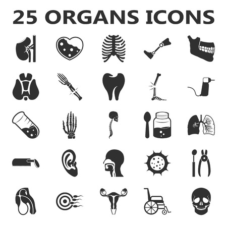 thrombus: Organs set 25 black simple icons. Body, anatomy, medical icon design for web and mobile device. Illustration