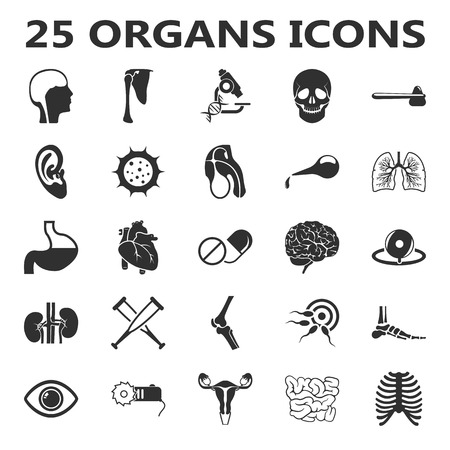 Organs set 25 black simple icons. Body, anatomy, medical icon design for web and mobile device. Illustration