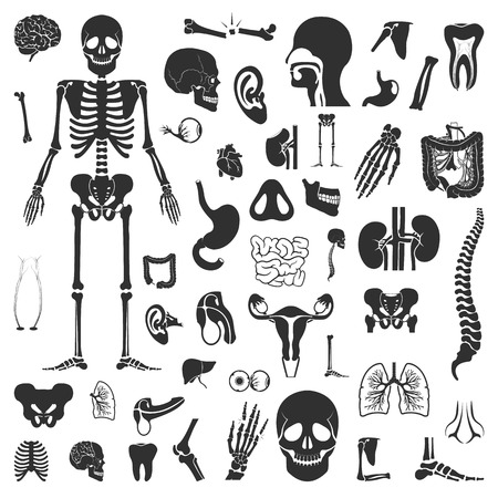 patella: Organs set 50 black simple icons. Body, anatomy icon design for web and mobile device.