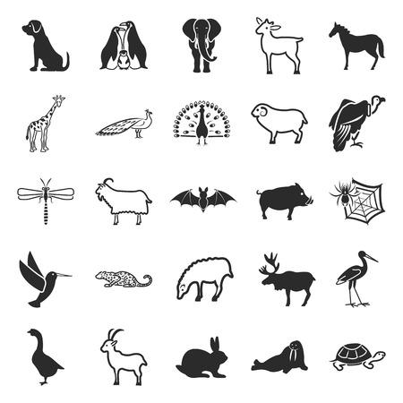 exotic pet: Animal, pet, exotic, nature 25 black simple icons.