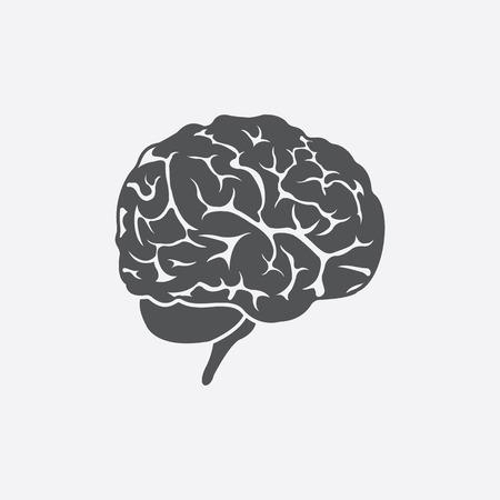 parietal: Brain icon of vector illustration for web and mobile design Illustration