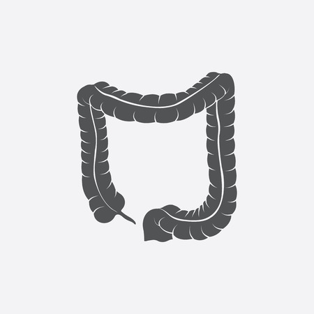 ileum: Colon icon of vector illustration for web and mobile design