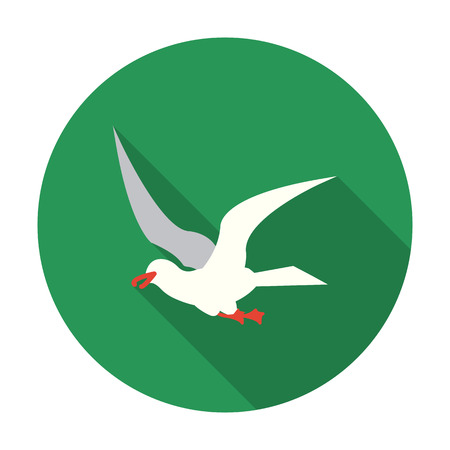 gull: Gull icon of vector illustration for web and mobile design Illustration