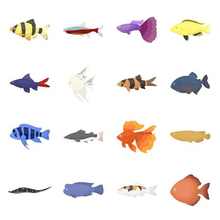 Aquarium fish 16 vector icon set in cartoon style for web design.