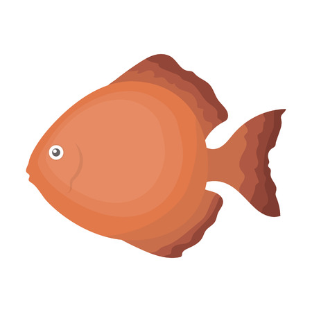 aequifasciatus: Discus fish icon cartoon. Singe aquarium fish icon from the sea,ocean life collection.