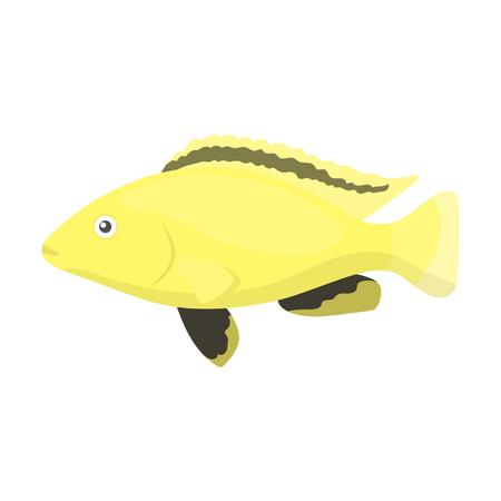 cichlid: Cichlid hummingbird fish icon cartoon. Singe aquarium fish icon from the sea,ocean life collection.