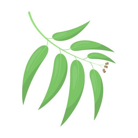tree isolated: Eucalyptus vector illustration icon in cartoon design Illustration