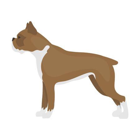 boxer dog: Boxer dog vector illustration icon in cartoon design Illustration