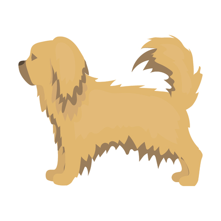 pekingese: Pekingese vector illustration icon in cartoon design