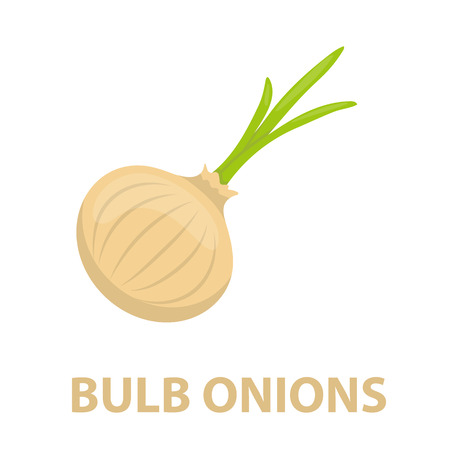 cellulose: Onion icon cartoon. Singe vegetables icon from the eco food collection - stock vector