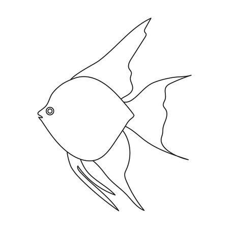 in common: Angelfish common fish icon line. Singe aquarium fish icon from the sea,ocean life collection.