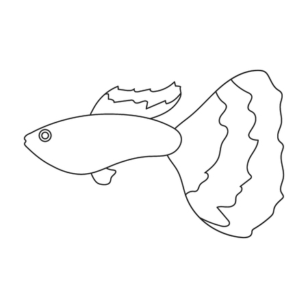 guppy: Guppy fish icon line. Singe aquarium fish icon from the sea,ocean life collection.