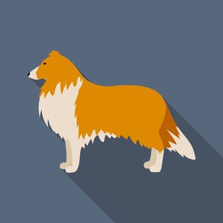 Collie vector illustration icon in flat design