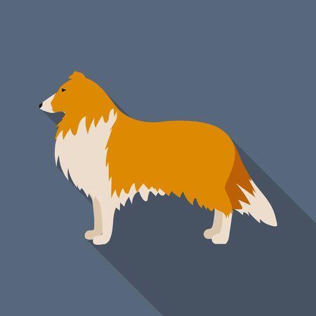 collie: Collie vector illustration icon in flat design
