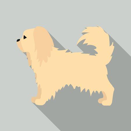 pekingese: Pekingese vector illustration icon in flat design Illustration