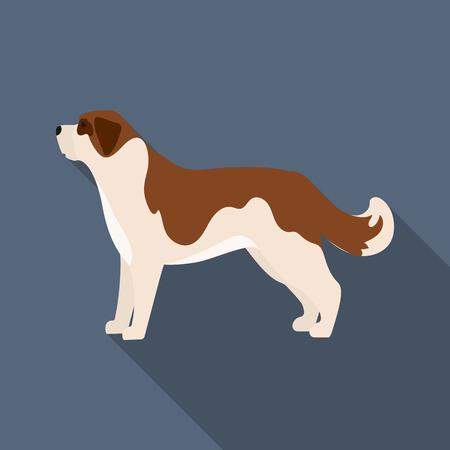 st  bernard: St. Bernard dog vector illustration icon in flat design