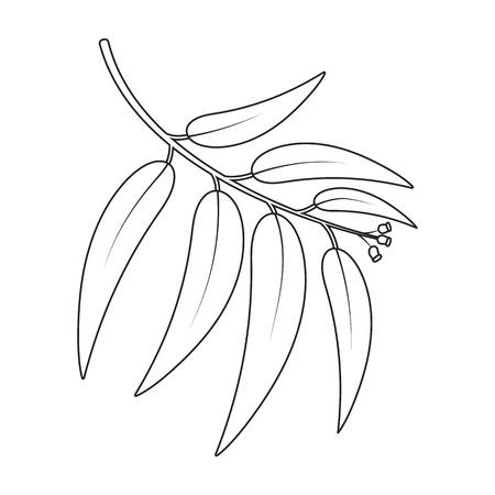 Eucalyptus vector illustration icon in line design