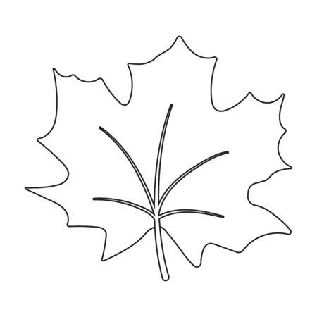 halifax: Maple Leaf vector illustration icon in line design