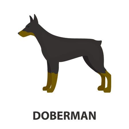 Doberman vector illustration icon in cartoon design