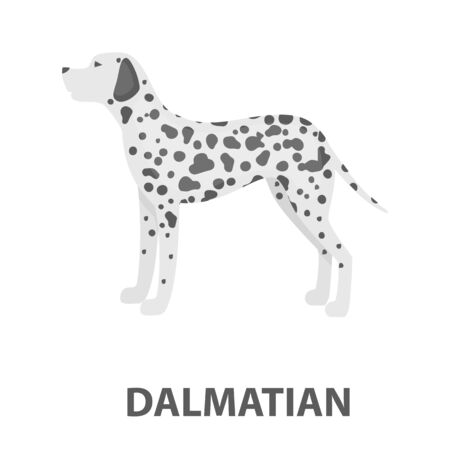 Dalmatian ilustración vectorial icono de diseño de dibujos animados