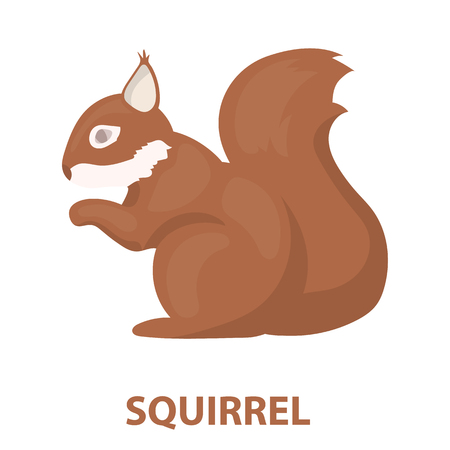 artful: Squirrel vector illustration icon in cartoon design Illustration