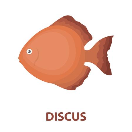 cichlid: Discus fish icon cartoon. Singe aquarium fish icon from the sea,ocean life cartoon. Illustration