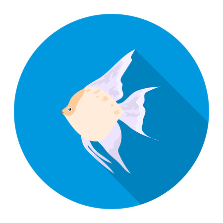 angelfish: Angelfish common fish icon flat. Singe aquarium fish icon from the sea,ocean life flat. Illustration