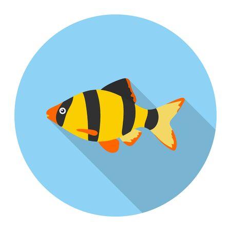 barbus: Barbus fish icon flat. Singe aquarium fish icon from the sea,ocean life flat. Illustration