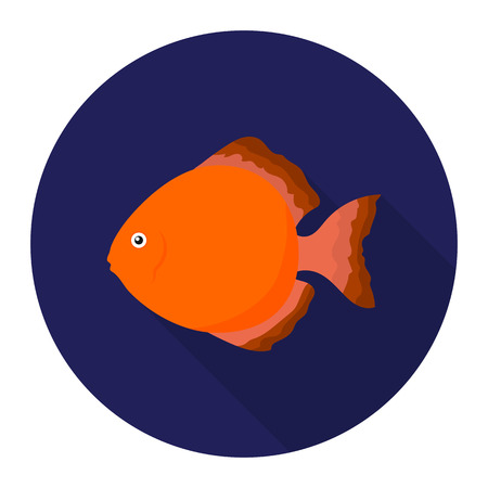 snakeskin: Discus fish icon flat. Singe aquarium fish icon from the sea,ocean life flat.