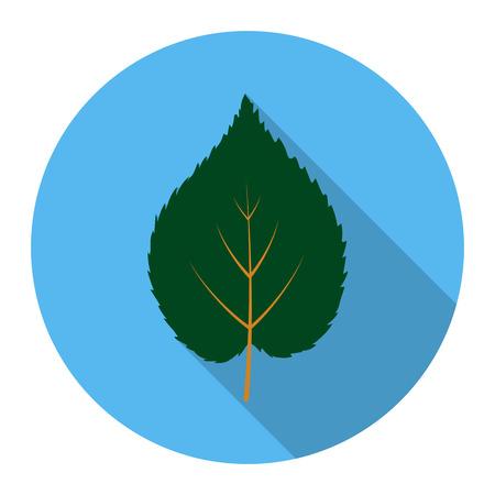 linden: Linden leaf vector illustration icon in flat design