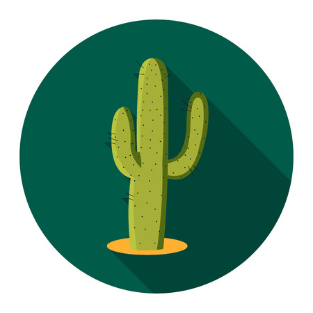 Cactus icon flat. Singe western icon from the wild west flat.