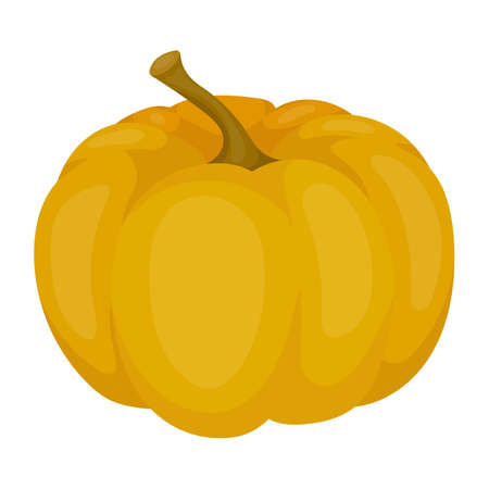 thanksgiving day symbol: Pumpkin icon in cartoon style isolated on white background. Canadian Thanksgiving Day symbol vector illustration.