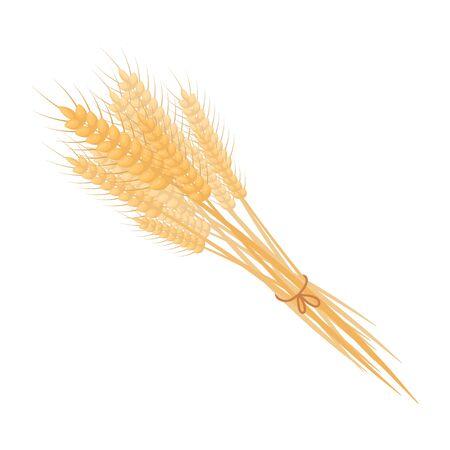 thanksgiving day symbol: Bundle di icona di grano in stile cartone animato isolato su sfondo bianco. Canadese illustrazione Giorno del Ringraziamento simbolo.