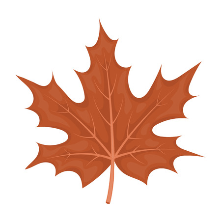 thanksgiving day symbol: Maple leaf icon in cartoon style isolated on white background. Canadian Thanksgiving Day symbol vector illustration.