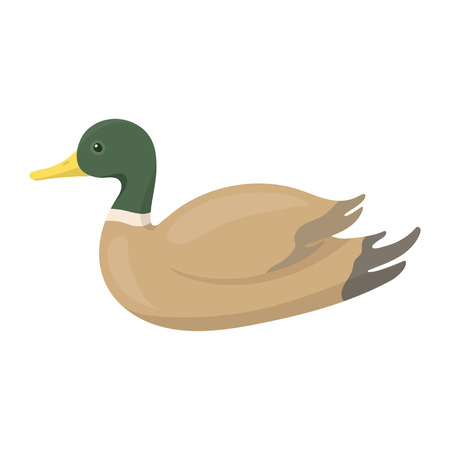 canard: Duck icon in cartoon style isolated on white background. Hunting symbol vector illustration.