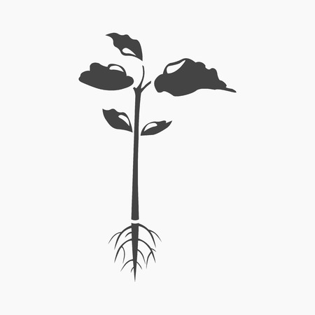 Plant icon of rastr illustration for web and mobile design
