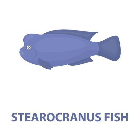 cichlid: Stearocranus fish icon cartoon. Singe aquarium fish icon from the sea,ocean life cartoon. Stock Photo