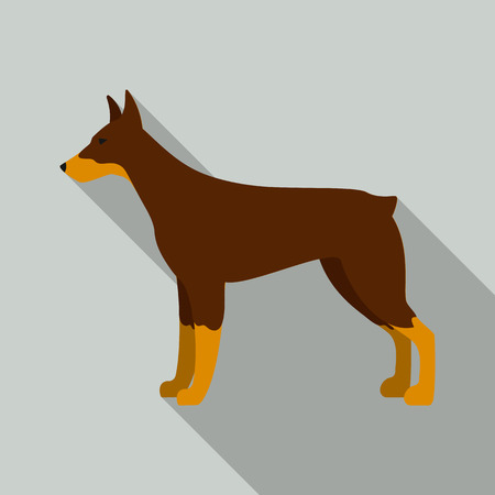 Doberman rastr illustration icon in flat design Stock Photo