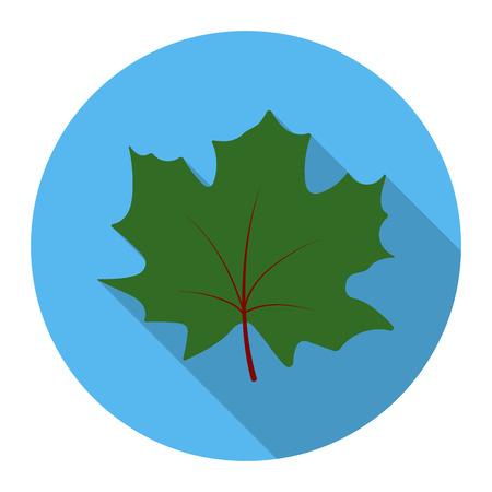 Maple Leaf rastr illustration icon in flat design