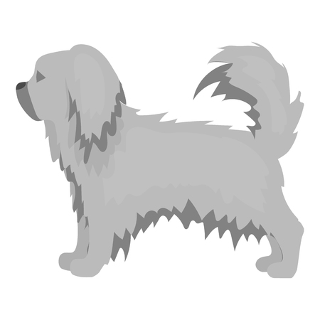 pekingese: Pekingese vector illustration icon in monochrome design
