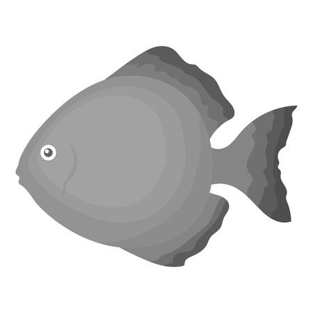 discus: Discus fish icon monochrome. Singe aquarium fish icon from the sea,ocean life monochrome. Illustration