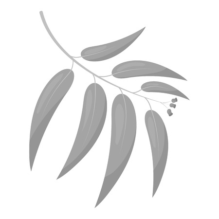 gum tree: Eucalyptus vector illustration icon in monochrome design Illustration